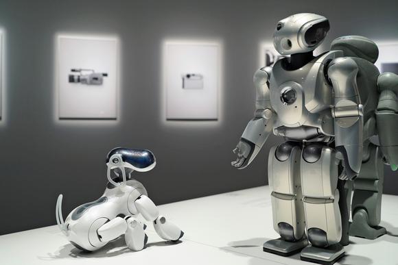 robot thú cưng