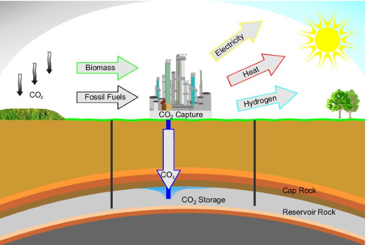 lưu trữ carbon