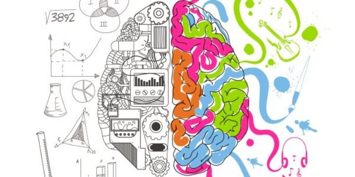 não con người