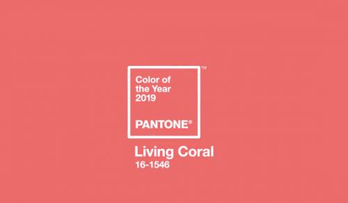 Hồng san hô là màu của năm 2019. Ảnh: Pantone.