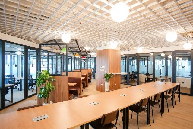 Không gian làm việc tại Cogo kích thích sáng tạo của các thành viên