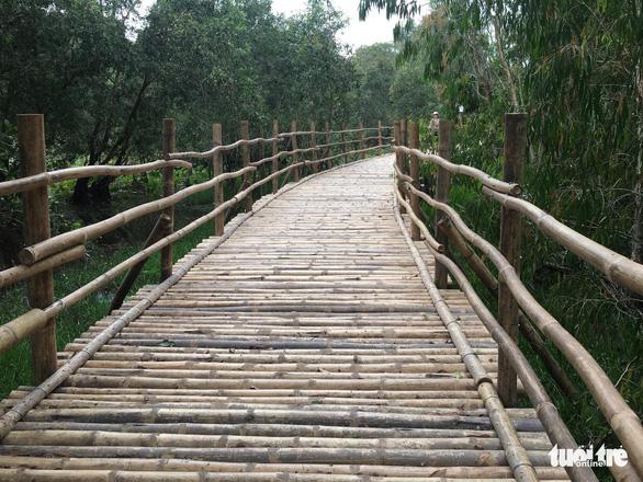 cầu tre dài nhất