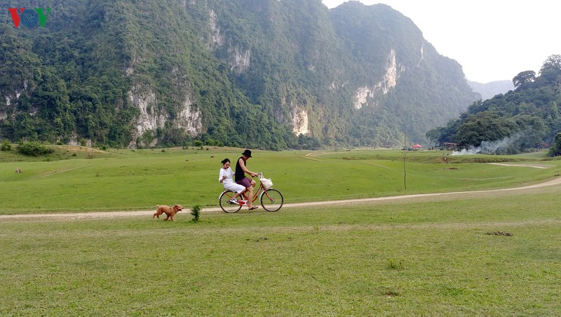 Chạy xe đạp cùng thú cưng trên thảo nguyên rộng lớn, xanh mướt.