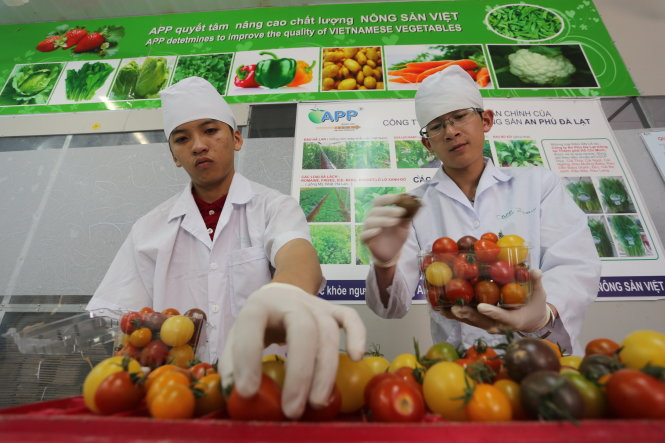 Nông sản Đà Lạt - Ảnh: Mai Vinh