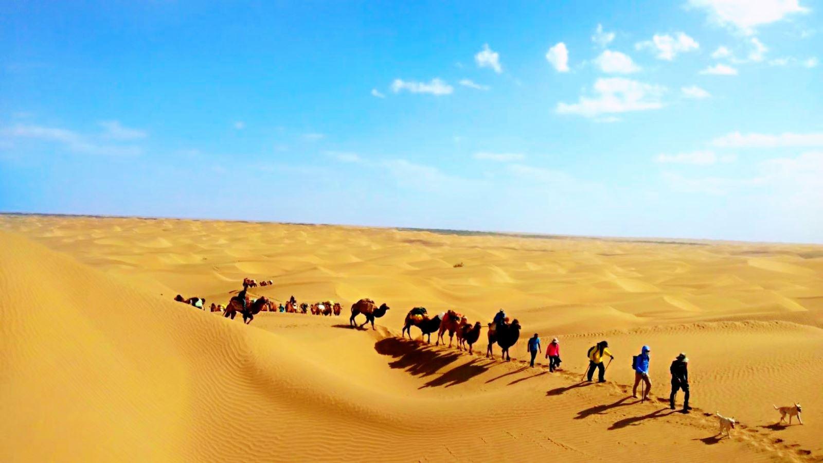 sa mạc lâu đời nhất