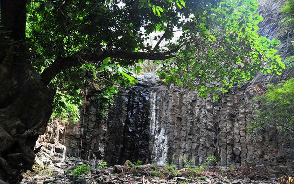 Phát hiện thêm nhiều gành Đá Dĩa tuyệt đẹp ở Phú Yên