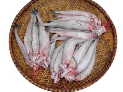 cá khoai