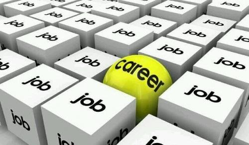 thị trường việc làm mỹ