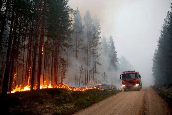 cháy rừng bắc cực