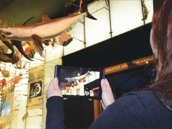 Chỉ cần đeo kính thực tế ảo hoặc đưa máy tính ảo Google Tango lên mô hình cá mập, khách có thể xem được cả xương ở bên trong