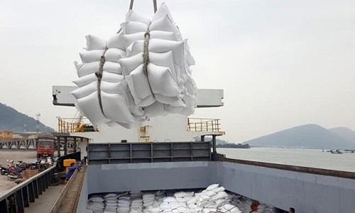 giá gạo xuất khẩu