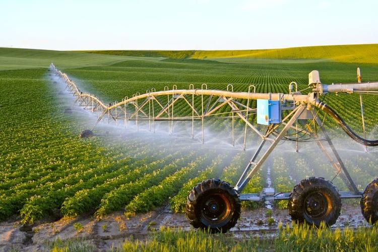doanh nghiệp đầu tư nông nghiệp